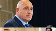 ПОГЛЕД В БЪДЕЩЕТО! Ясновидка предсказва: Борисов ще обедини Балканите, избори могат да предизвикат само Патриотите