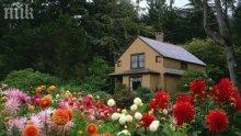 Зеленият дом на семейството