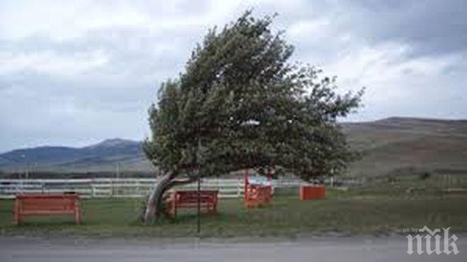 Ураганен вятър отнесе метеорологична кула в Родопите