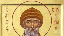 Православната църква почита Свети Спиридон