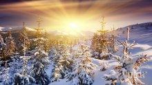 Пролет в средата на декември! Термометърът скача до 18 градуса, но от неделя....