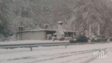 В Драгоман снежната покривка достигна 3 см, сняг вали във Враца, Монтана, Бургас и София