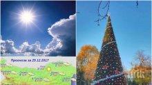 САМО В ПИК! Времето полудя! Живакът в София удари 16 градуса на Коледа (СНИМКА)