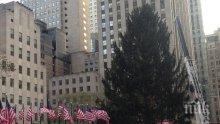 Студ! Кметът на Ню Йорк призова жителите на града да си стоят колкото може повече в къщите заради  лошото време