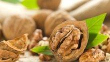 НЕВЕРОЯТНО! Ето как орехите помагат и на щитовидната жлеза