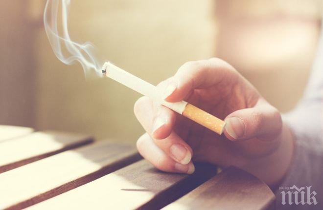 Сърбия готова да забрани цигарите в кръчмите