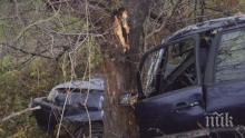 Кошмар на пътя! Шофьор се потроши след удар в дърво