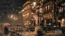 Зимна буря! В Япония падна 75 сантиметра сняг (ВИДЕО)