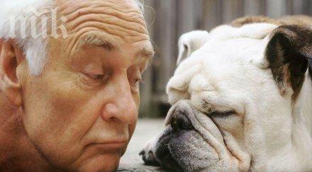 стопаните кучета радват добро здраве