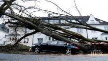 АПОКАЛИПСИС! Бурята в Германия причини щети за половин милиард евро