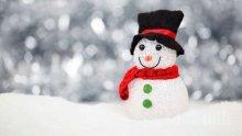 Отбелязваме Световния ден на снежния човек