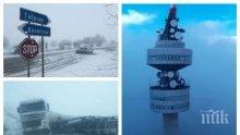 """ИЗВЪНРЕДНО! България в снежен ступор! Ураганът клати кулата """"Снежанка"""" заплашително! Затворени пътища, паднали дървета и населени места без ток и вода"""