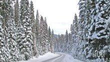 Зимата показва променлив характер! Бурен вятър носи сняг днес, през уикенда ще е ту топло, ту студено
