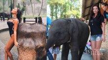 ПРЕЦЕНЕТЕ САМИ! Коя стои по-добре до слончето? Николета VS Преслава!