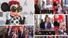 Признание! Мини Маус със звезда на Алеята на славата на Холивуд