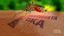 """Опасно! В Русия предупреждават: Турция пред епидемия от вируса """"Зика"""""""