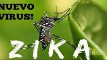 Роспотребнадзор алармира: В  Турция са открити комари, пренасящи вируса Зика