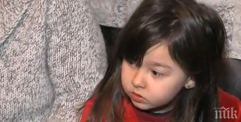 Ужас! Поредно нападение на дете от питбул (СНИМКА)
