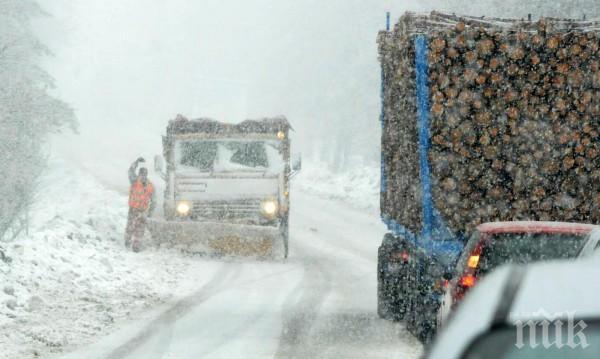 Снегът скъса далекопровод - белоградчишки села бедстват без ток