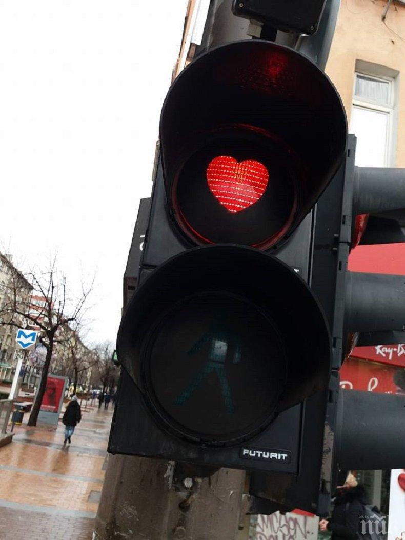 Любовни светофари отново изненадаха софиянци (СНИМКИ)