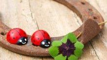 НАУЧНО ДОКАЗАНО: Има 3 начина да привлечете късмета в живота си!