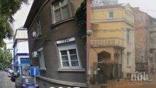Санитарна сеч скара цяла улица в Пловдив