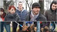 Кой трови кучета из парковете на София? Случаите на пострадали домашни любимци са десетки