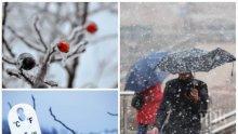СТУДОВЕТЕ СЕ ЗАВРЪЩАТ! Сняг ще засипе страната, температурите ще започнат да падат