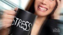 Как да се възползвате от стреса