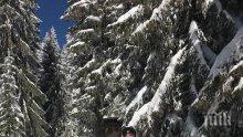 НА ТЕФЕРИЧ: Мая Манолова и Ангел Найденов избягаха от суматохата, радват се на зимна приказка (СНИМКИ)