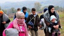 В Австрия се обявиха с подписка срещу депортацията на сирийско семейство в България