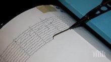 Опасни прогнози! Камчатка заплашена от трус с магнитуд 8.0 по Рихтер до края на годината