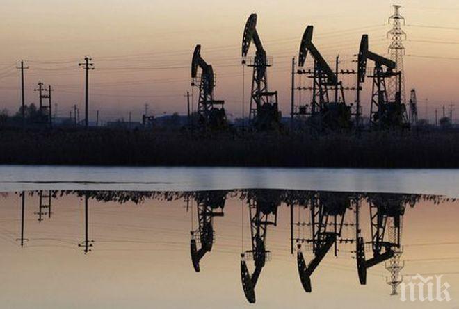 Цените на петрола се стабилизираха след двудневен спад