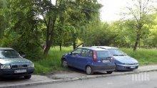 ВАЖНА ПРОМЯНА! Ограничават влизането в Борисовата градина с коли