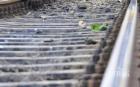 ЖЕСТОКО! Влак разполови самоубиец на релсите по жп линията Монтана-Берковица
