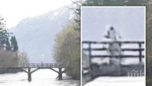 МИСТЕРИОЗНО! Снимаха пришълец край езерото Лох Нес