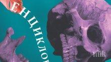 """Аферата """"Скрипал"""" влезе в новата """"Енциклопедия на отровите"""""""
