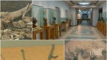 Древните лечителски умения на българите: Изложба показва медицината през вековете