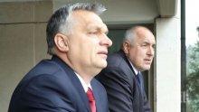 ПЪРВО В ПИК! Бойко Борисов поздрави Орбан за безапелационната победа на изборите