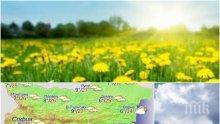 ПРОЛЕТНА ИДИЛИЯ! Слънце, високи температури и малко облаци за началото на работната седмица