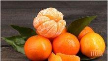 Не изхвърляйте обелките на мандарините, ето за какво могат да се ползват