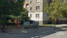 НЕВОЛИ! Улица в Пловдив си иска кофите за смет