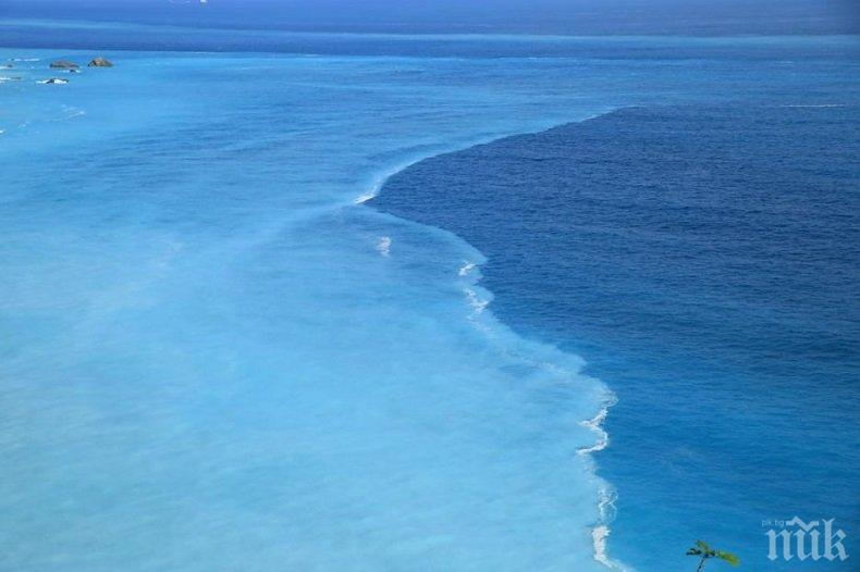 ИДВА ЛИ КРАЯТ? Учени откриха признаци за глобална катастрофа в Атлантическия океан