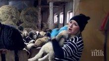 Йоана Захариева пее на 200 овце в Дъбован