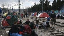 Евростат: България приютява основно сирийци