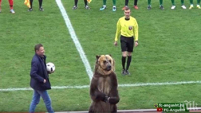 Футболен мач в Русия бе открит от... мечка! (ВИДЕО)
