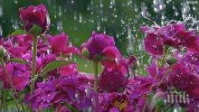 Дъжд и 33° до края на април