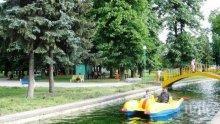КЕФ! В Пазарджик карат безплатни велорикши и водни колела