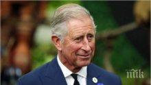 Принц Чарлз бе одобрен да поеме поста ръководител на Общността на нациите