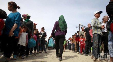 Босненският град Бихач е наводнен от мигранти